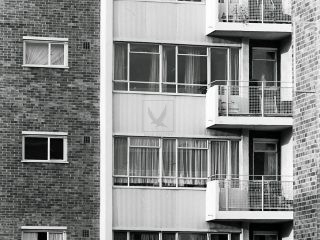 Kensington public housing in borough of Kensington black and white